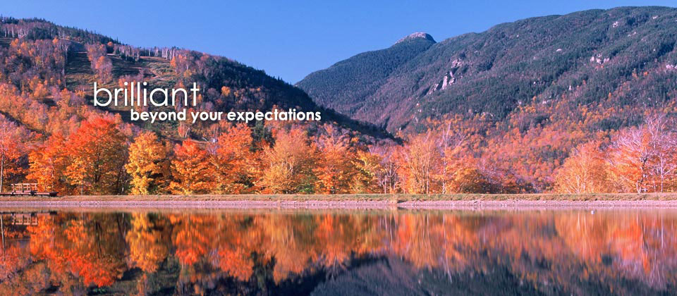 brilliant beyond your expections