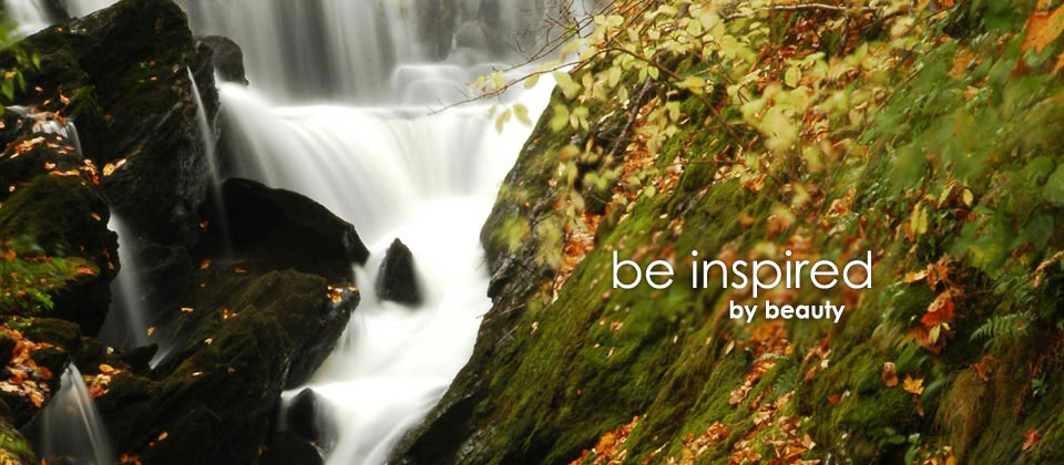 be inspired by beauty
