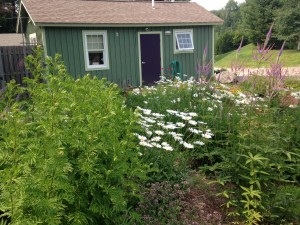 Smugglers' Notch Vermont flower cutting garden