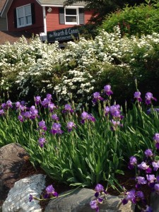 Smugglers' Notch Vermont flower garden