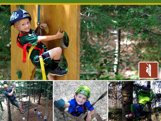 ArborTrek Treetop Collage