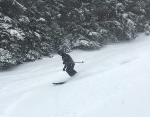 snow-fly-vin