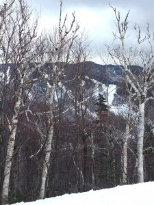 From Snow Snake looking towards Black Snake