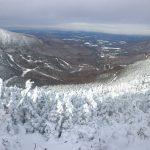 Panoramic February 5, 2017