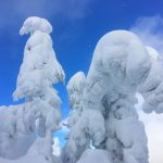 Snow Ghosts February 3, 2017