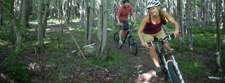 Mountain bikers in the woods