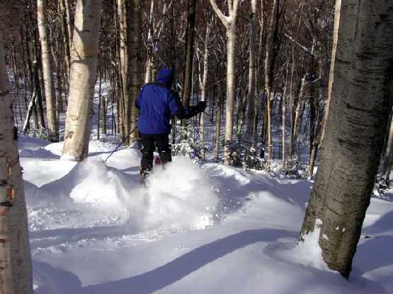 Glade skiing at Smugglers' Notch Resort in Vermont